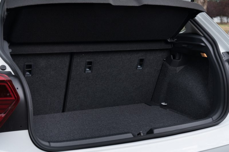 The trunk of Polo VI